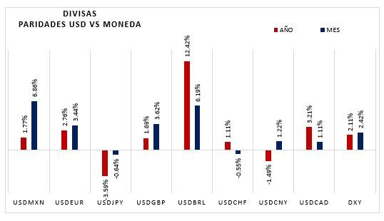 Divisas paridades USD vs Moneda